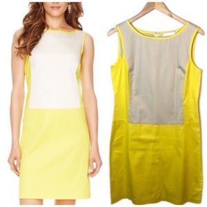 The Limited | Colorblock Shift Dress